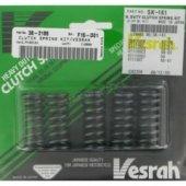 VESRAH SK-161 - комплект пружин сцепления для HONDA VT1100C 1997-2007, CBR 1000F 1987-1996, CB 1000R 2009-2012